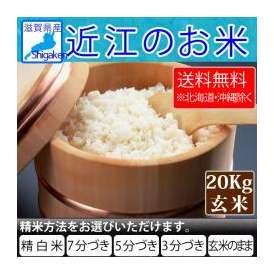 【送料無料※北海道・沖縄を除く】28年 近江のお米(滋賀県産10割) 20kg玄米 【精米方法が選べます】