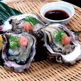 岩牡蠣(天然・育成)