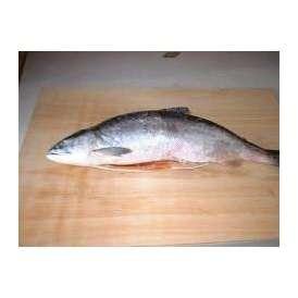 冷凍生紅鮭1本- 2kg前後【送料無料】