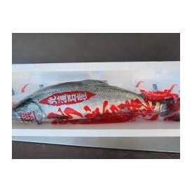 新巻鮭‐1本3kg前後【送料無料】