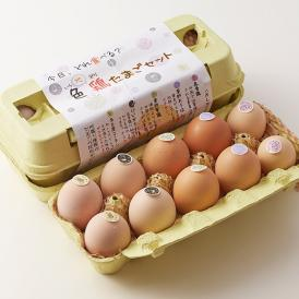 5種類の地鶏のたまごの食べ比べセットと、若鶏が産んだ瑞々しい初産みたまごが10個付きます