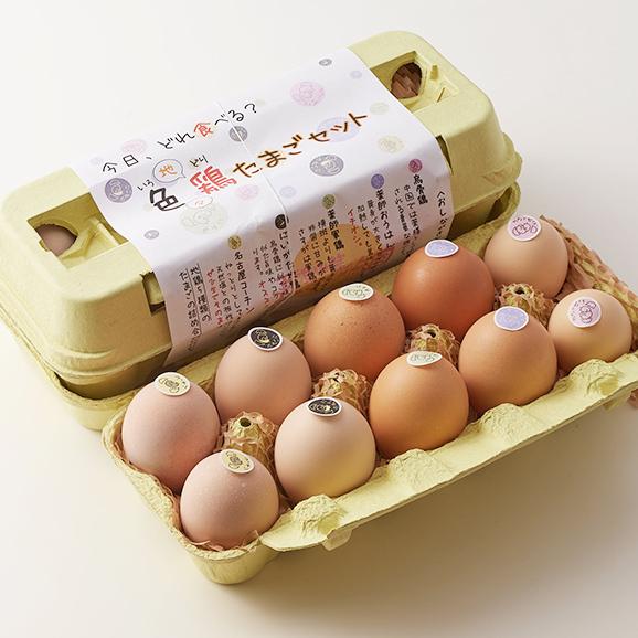 色鶏たまご2パック(5種類の平飼い地鶏の有精卵詰め合せ)と初産みたまご1パック【計30個】01