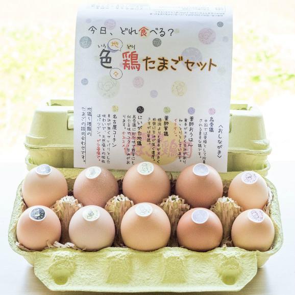 色鶏たまご2セット(5種類の平飼い地鶏の有精卵詰め合せ)と初産みたまご【30個】02