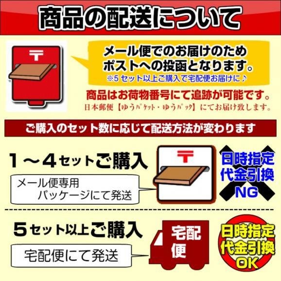 ひやむぎ 冷麦 お取り寄せ 夏の冷し麺 つるつるしこしこ 九州特産 本場熟成ひやむぎ 細うどん たっぷり1000gサイズ05