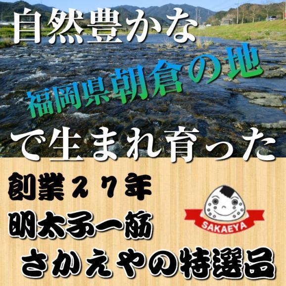 【メール便専用】ご飯のお供に『明太子入り子持ちきくらげ佃煮90g』2袋セット!02