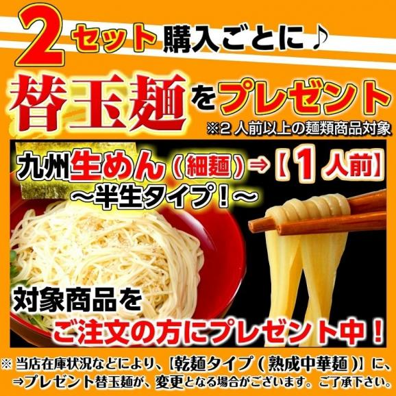 久留米ラーメン 九州生麺 セット 白濁豚骨スープ付 2人前 お取り寄せ ご当地ラーメン 特産品 メール便商品 お試しグルメギフト04