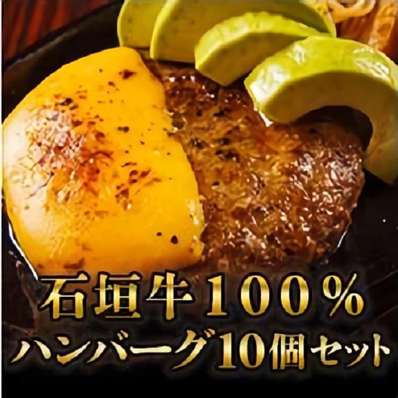 【送料無料】石垣牛100%ハンバーグ 10個セット01