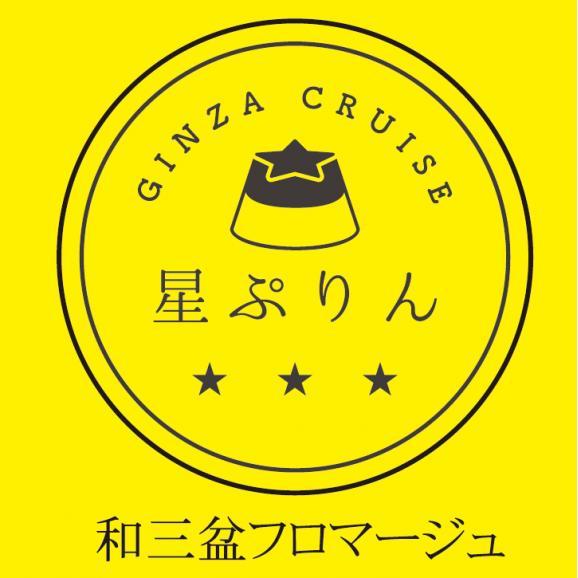 【東京スイーツ】星ぷりん 和三盆フロマージュ ギフトBOX(4個入)06