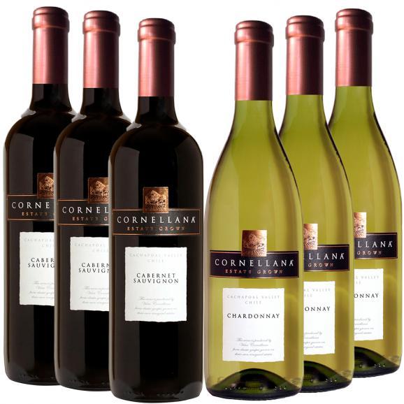 【送料込】ワイン6本セット!シェフソムリエおすすめ家飲みワイン(赤×3・白×3)01