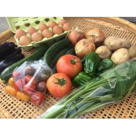 平飼い鶏の有精卵&季節の有機野菜セット
