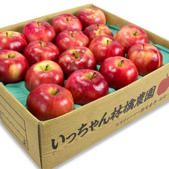 紅の夢 クッキング用B (10玉~20玉)  果肉まで赤い希少品種02
