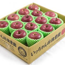 【予約販売:11月20日以降発送】コスモふじ 5kg ギフト用 | 絶妙な甘味・酸味で最高峰の味わい
