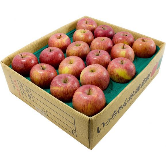 葉取らずサンふじ 3kg ご自宅用   りんごの王様がさらに美味しく02