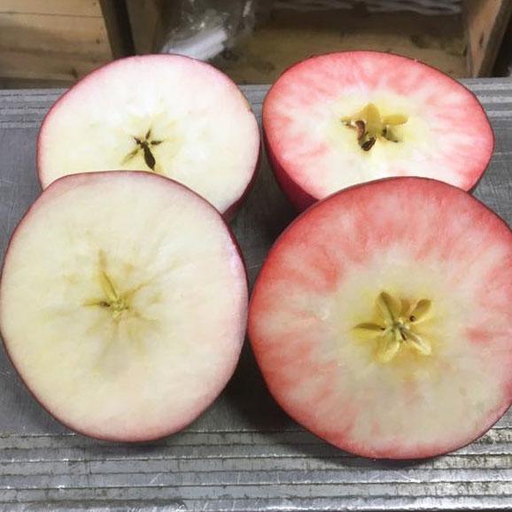紅の夢 クッキング用A (10玉~20玉)  果肉まで赤い希少品種04