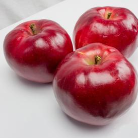 「紅の夢」果肉まで赤い希少品種