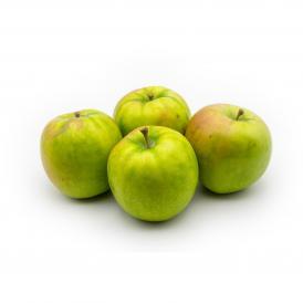 生食、調理、加工どれも可能なオールラウンダーを目指して開発されました!