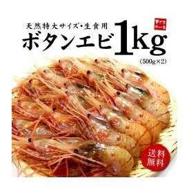 【送料無料】超特大ボタンエビ1kg(14~18尾)特大サイズの天然ぼたんエビを獲れたて急速冷凍お刺身がおススメ【牡丹海老/ぼたんえび/海鮮丼】《ref-eb2》[[ぼたんエビ500g-2p]