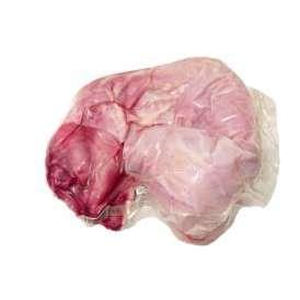 イタリア産 フレッシュ ラプロー うさぎ 内臓付き 約1.5kg 【不定貫/グラム再計算】