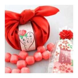 母の日特別ギフト 私の気持ちカーネーションキャンディーセット【送料無料】