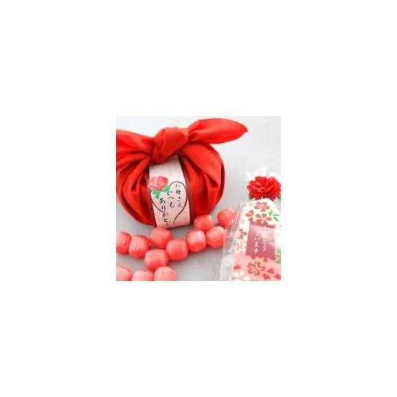 母の日特別ギフト 私の気持ちカーネーションキャンディーセット【送料無料】01