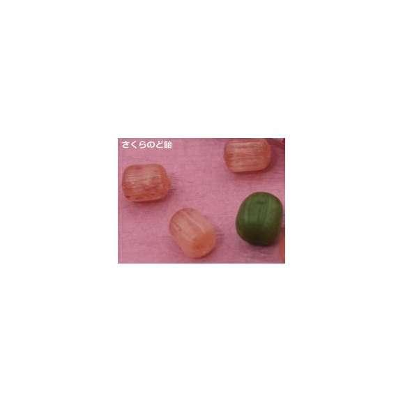 薄紅桜03