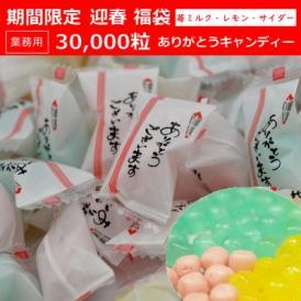 業務用30,000粒入りありがとうキャンディー 迎春 福袋 正月 イベント用【期間限定】