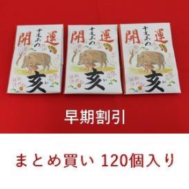 11月30日まで早割☆開運干支飴【亥・いのしし】2ケース(120個)