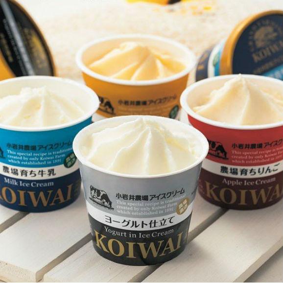 小岩井農場 自家製アイスクリーム 【送料無料】 【110ml × 10個】 01