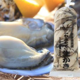 季節限定 岩手県広田湾産 よねさき牡蠣 むき身 中粒500g入り 加熱用カキ 【送料無料】