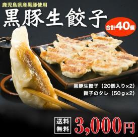 黒豚餃子【送料無料】 黒豚生餃子