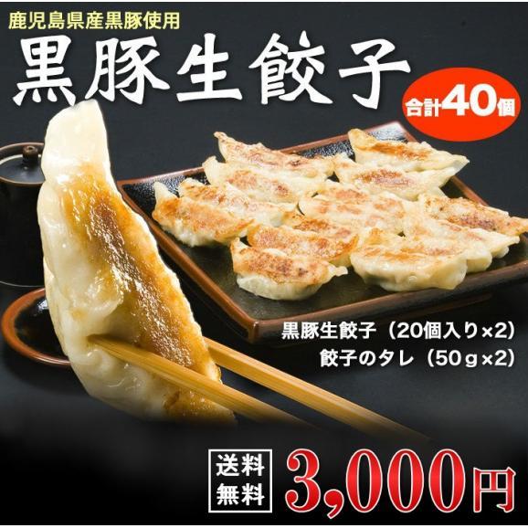 黒豚餃子【送料無料】 黒豚生餃子01