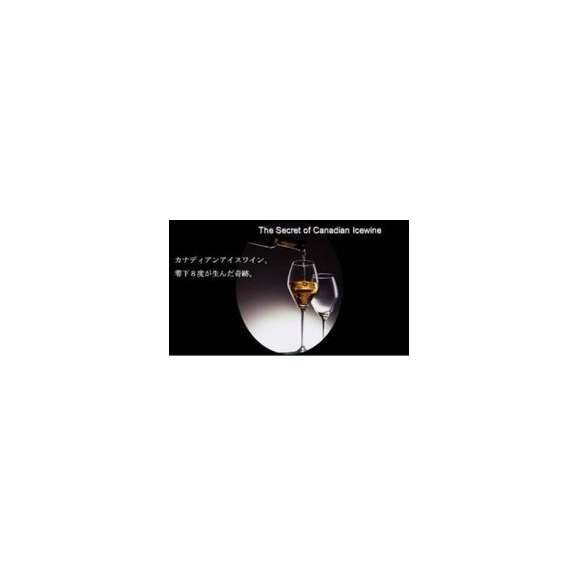 Reif(ライフ) Vidal 375ml ヴィダル アイスワイン カナダ産 デザートワイン02
