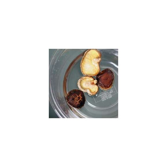 「訳あり価格]大分県産 乾燥椎茸「不選別」200g [無農薬/原木栽培]03