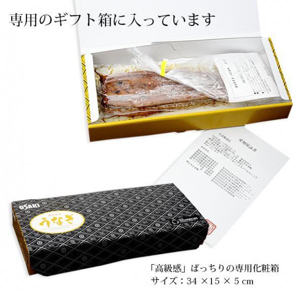 鹿児島県産 うなぎ蒲焼(長焼) 2尾 (135gx2) 送料無料 お中元/ギフト04