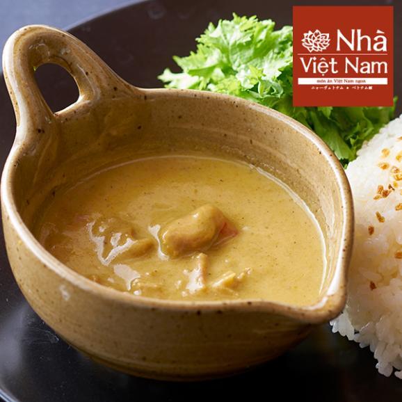 NHAヴェトナム 冷凍 ベトナムチキンカレー 5人前 「美味しいベトナム」シリーズ 01