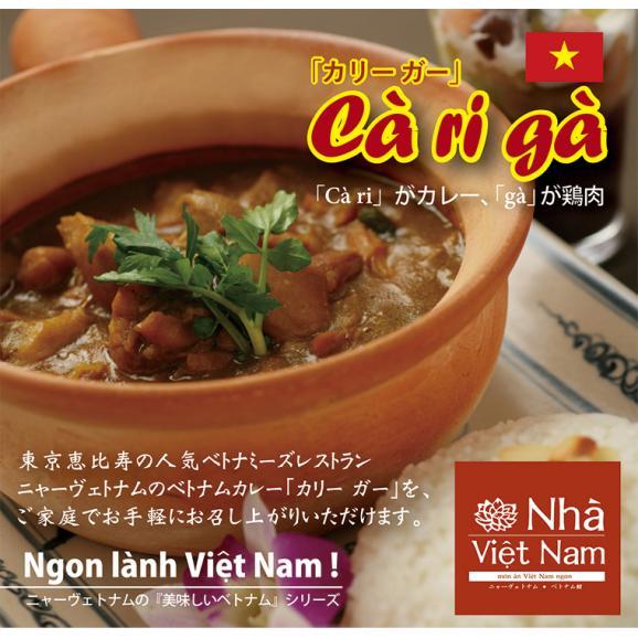 [送料無料] ニャーヴェトナム「美味しいベトナム」シリーズ 冷凍 ベトナムチキンカレー 5人前 02