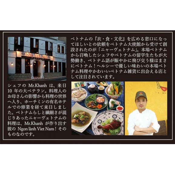 NHAヴェトナム 冷凍 ベトナムチキンカレー 5人前 「美味しいベトナム」シリーズ 03
