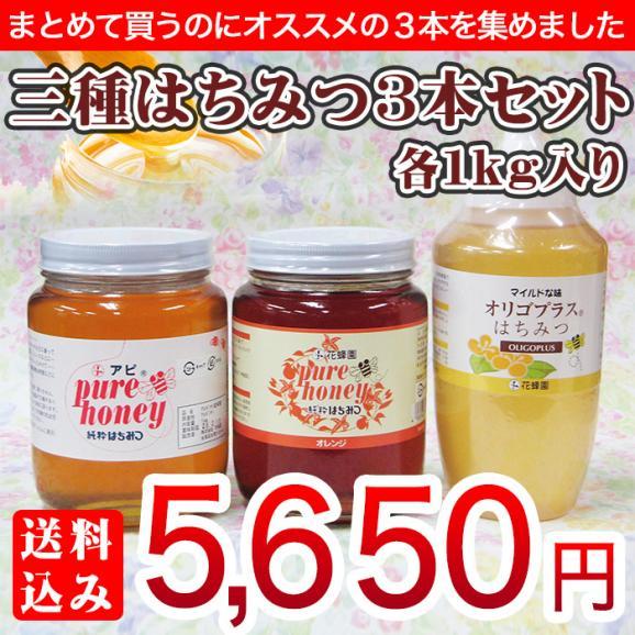 【送料込み】三種はちみつ3本セット(アルゼンチン産蜂蜜1kg・輸入オレンジ蜂蜜1kg・オリゴプラスはちみつ1kg)01
