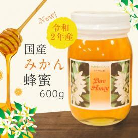 国産みかん蜂蜜 令和2年・和歌山産 600g×2本