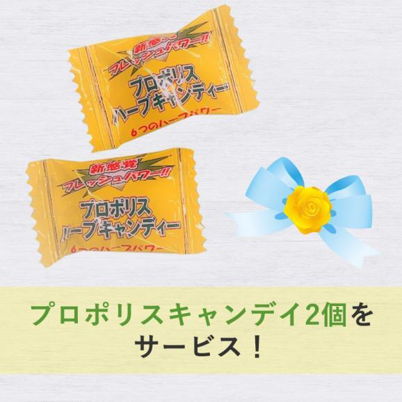 父の日健康セット【送料込み】05