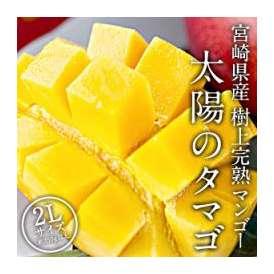 [予約販売]宮崎県産マンゴー 太陽のタマゴ×1玉 2Lサイズ[350g~449g] 10玉まで1配送でお届け