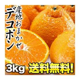 【送料無料】産地おまかせ デコポン 3kg 6kg[2箱]まで1配送でお届けします 佐川常温便でお届け 北海道・沖縄・離島は送料無料の対象外です