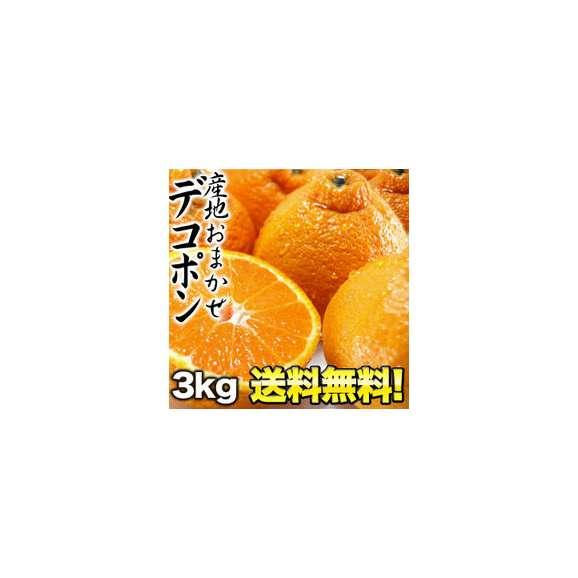【送料無料】産地おまかせ デコポン 3kg 6kg[2箱]まで1配送でお届けします 佐川常温便でお届け 北海道・沖縄・離島は送料無料の対象外です01