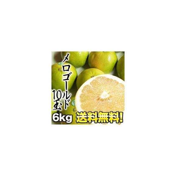 【送料無料】メロゴールド10玉[約6kg] 1箱1配送でお届けします 佐川常温便でお届け 北海道・沖縄・離島は送料無料の対象外です01