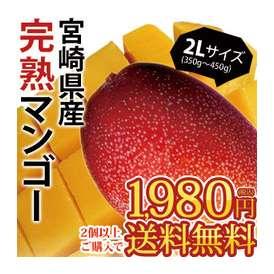宮崎県産完熟マンゴー2Lサイズ1玉[約350g~450g] 8個まで1配送でお届けします 佐川クール[冷蔵]便でお届け 北海道・沖縄・離島は送料無料の対象外です