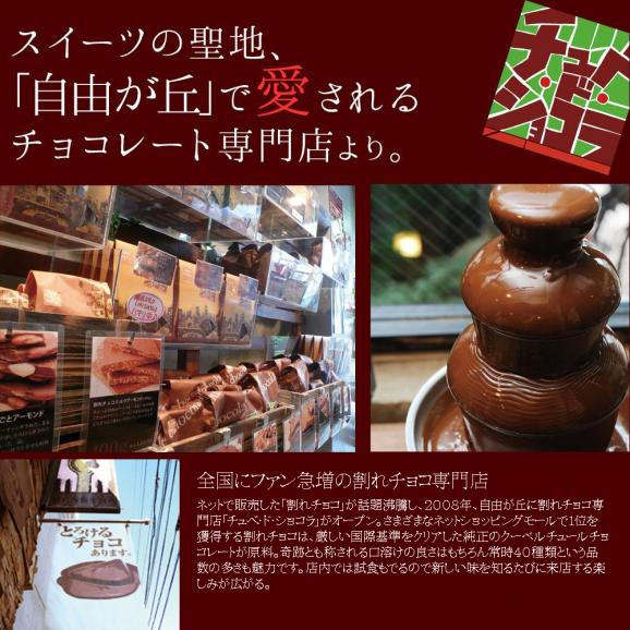 割れチョコミックス5 ミルク多め 【チュベドショコラ】【チョコレート】04