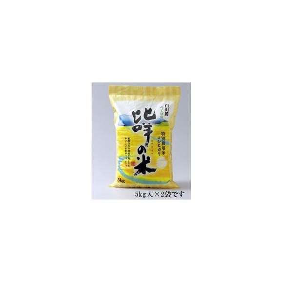 【送料込】特別栽培米コシヒカリ ひめの米・精米5kg×2 【地域名産ギフト】【ご当地グルメ】【お中元・ご贈答に】01