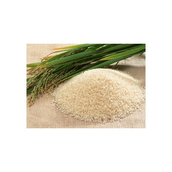 【送料込】特別栽培米コシヒカリ ひめの米・玄米2kg 【地域名産ギフト】【ご当地グルメ】【お中元・ご贈答に】03