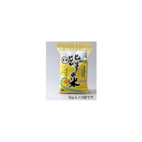 【送料込】特別栽培米コシヒカリ ひめの米・玄米5kg×2 【地域名産ギフト】【ご当地グルメ】【お中元・ご贈答に】01