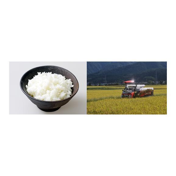 【送料込】特別栽培米コシヒカリ ひめの米・玄米5kg×2 【地域名産ギフト】【ご当地グルメ】【お中元・ご贈答に】04